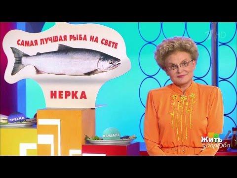 Жить здорово! Нерка— полезная красная рыба. (25.04.2017)