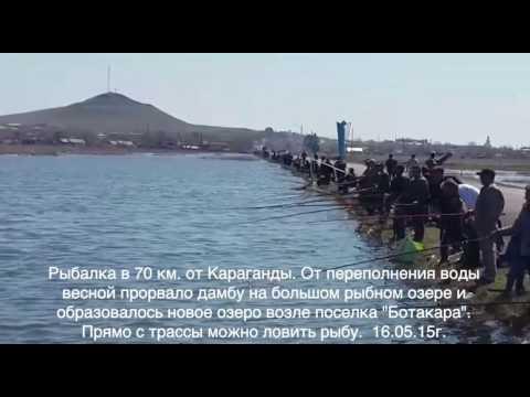 Рыбалка в Карагандинской области. Казахстан.