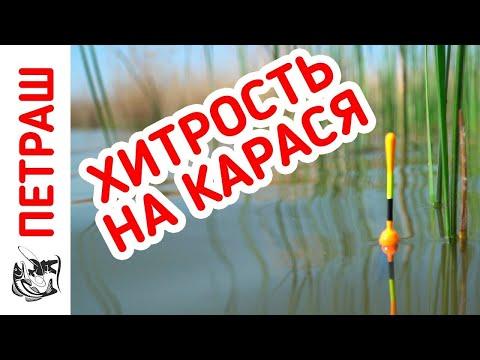 Рыбалка НА КАРАСЯ! Рвём красного и КАРАСЬ ДУРЕЕТ!