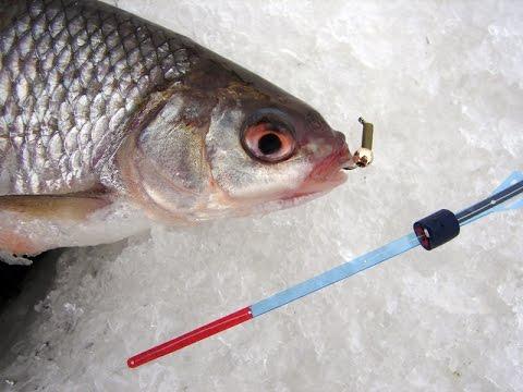 Рыбалка без насадки. Гвоздешарик Уловка