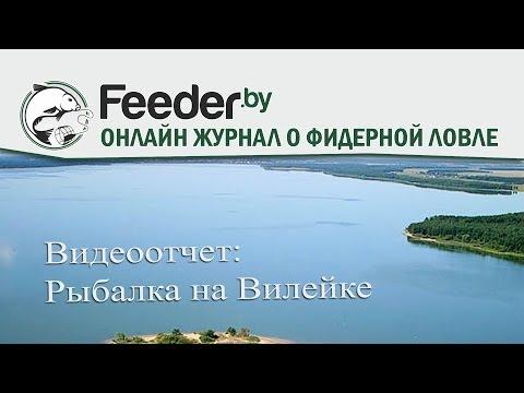 Видеоотчет ловля фидером на Вилейском водохранилище