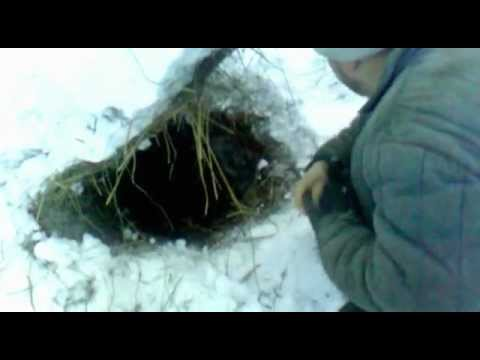 рыбалка зимой на вьюна на украине