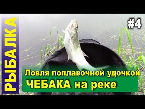 """Рыбалка - Ловля чебака на реке поплавочной удочкой. Прикормка """"DUNAEV-FADEEV Feeder River"""". Тест."""