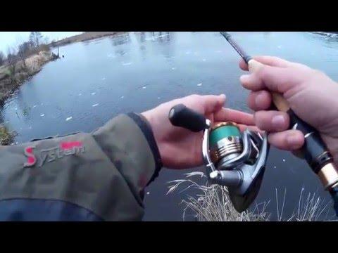 Ловля хищника на реке Лесная