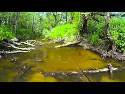 Ловля форели на поденку - Калининградская область Mayfly fly fishing