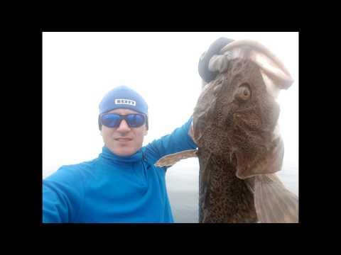 Рыбалка Владивосток , камбала , краб , терпуг Fishing , flounder, crab, rasp Nikolay Baryshev
