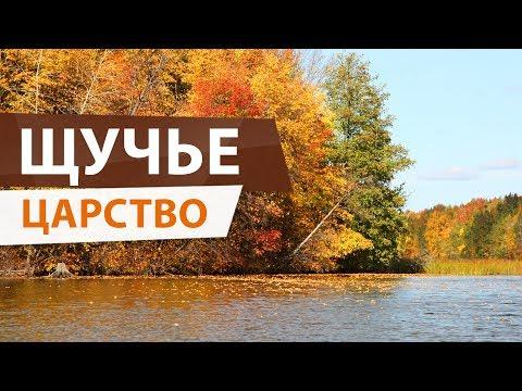 Осенний ЖОР ЩУКИ! Удачная рыбалка на Волге