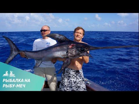 Рыба меч в Атлантическом Океане. Вытащили за 40 минут!