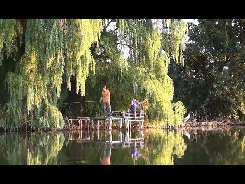 Летняя рыбалка на поплавочную удочку. Полезные советы