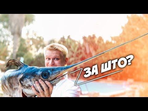Рыба-меч с чесночной картошечкой