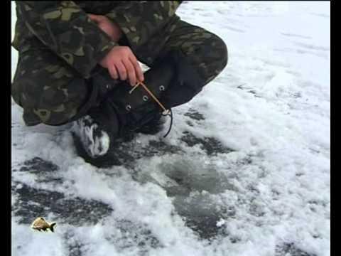 Первый лёд и окунь