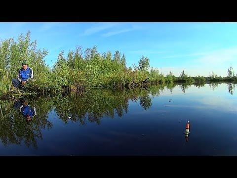 Так клюет карась. Fishing, Russian style!