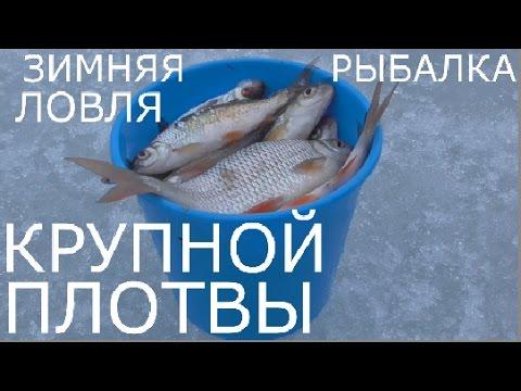 Зимняя рыбалка.Ловля крупной плотвы на Яузском водохранилище