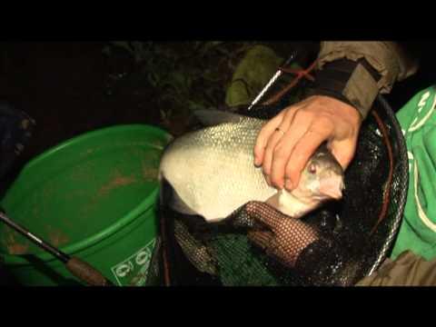 Истринское водохранилище Ночная Рыбалка Лещ