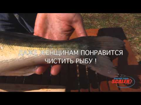Рыбочистка . Электрическая рыбочистка EFS1