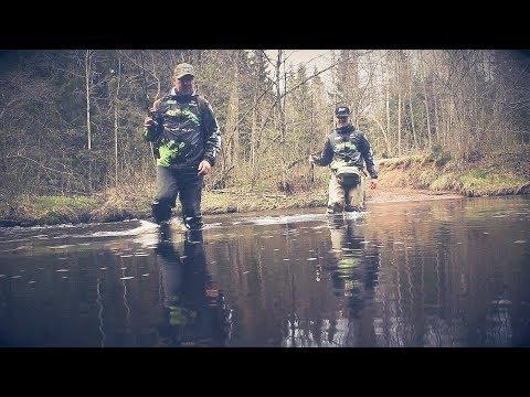 Ловля ручьевой форели. Рыбалка на дикой лесной реке. Форель ленинградской области.