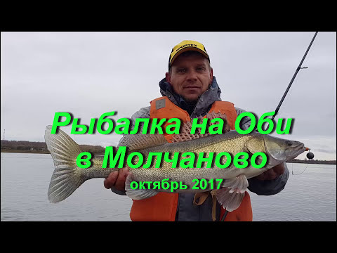 Рыбалка на Оби в Молчаново (ТО). Октябрь 2017.