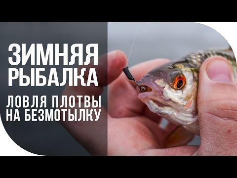 Зимняя рыбалка. Ловля плотвы на безмотылку. [FishMasta.ru]