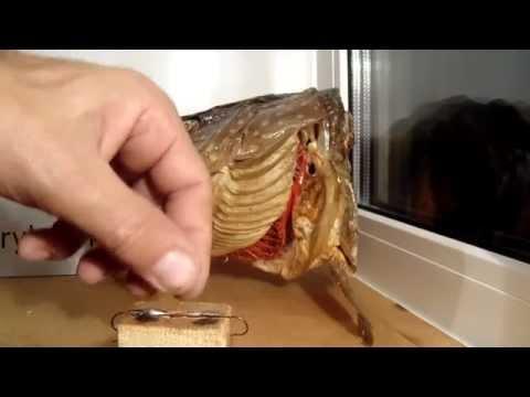 Балансир на окуня своими руками,видео rybachil.ru