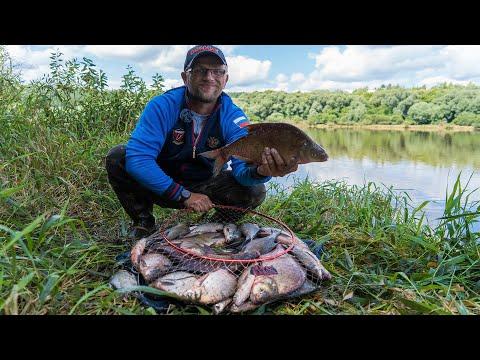 Ловля леща на р.Ока. Как наловить леща на реке. Рыбалка 2020