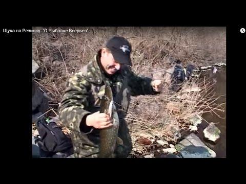 """Удачная рыбалка на Резинку: плотва, карась и ЩУКА! """"О Рыбалке Всерьез"""" видео 75."""