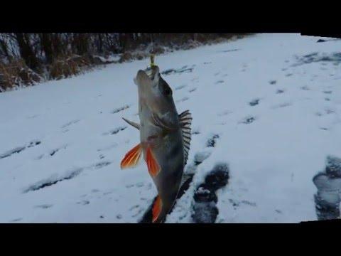Зимняя рыбалка. Ловля окуня на чёртика.
