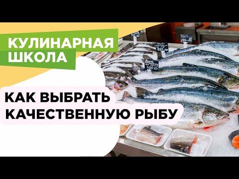 Как выбирать рыбу, почему замороженная рыба лучше охлажденной, зачем покупать целую рыбу, а не филе