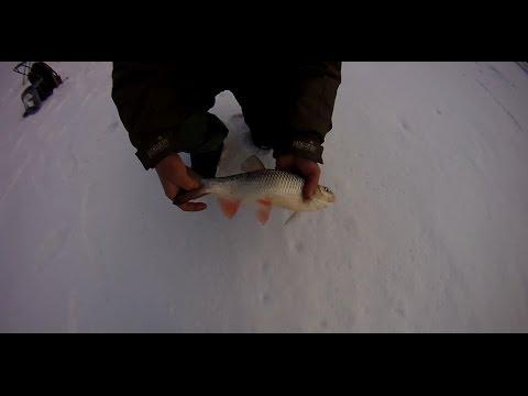 Ловля голавля зимой. Успеть подсечь.