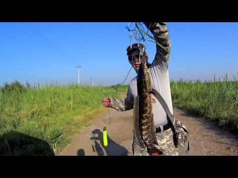 Ловля змееголова в малых озерах Узбекистана / Uzbekistan small lakes' snakehead