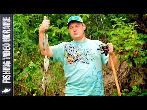 Убийца карася на практике | 1080p | FishingVideoUkraine