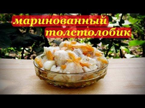 Маринованный толстолобик, рецепт рыбной закуски.