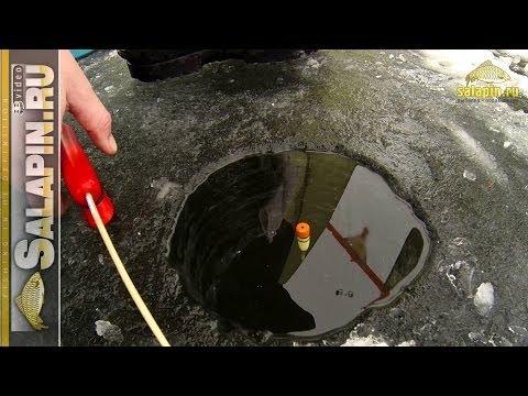 Зимние поклевки подлещика: классический поплавок, отводной поводок, мормышка [salapinru]