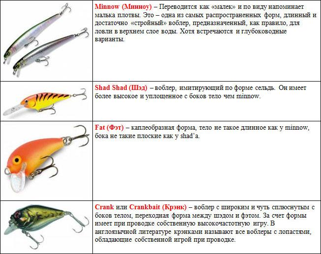 Форма тела и степень плавучести