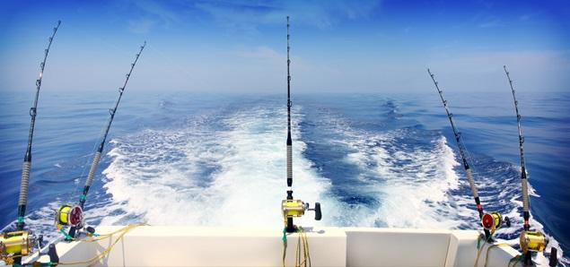 Ловля рыбы троллингом  Преимущества и недостатки рыбалки