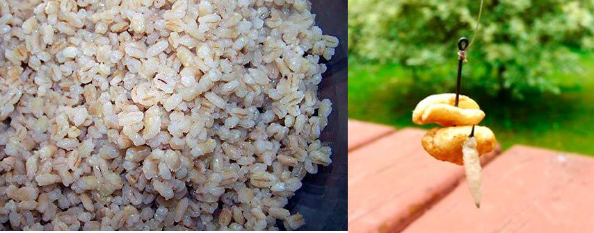Мягкие или твердые зерна