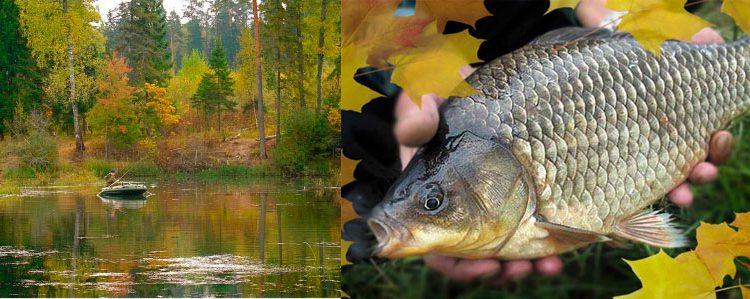 Рыбалка в Краснодарском крае — Краснодарский край 2019