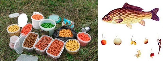 Ловля карпа на бойлы - рецепты приготовления, ароматизаторы и лучшие бойлы