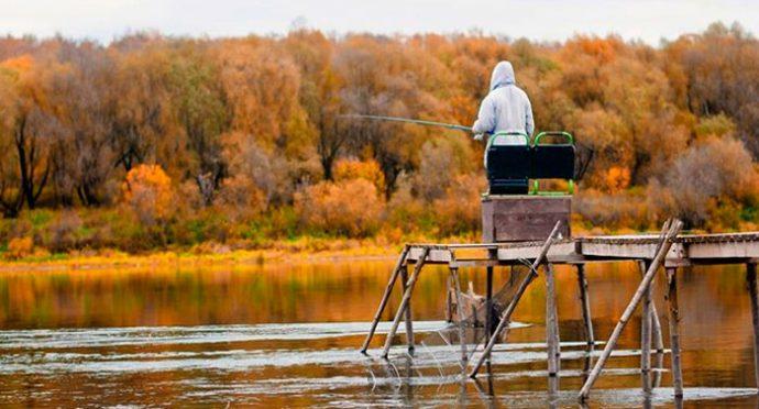 Как ловить плотву осенью и выбрать рабочие насадки