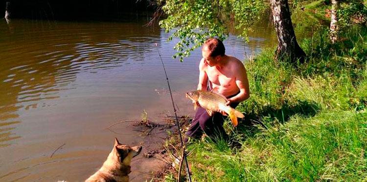 Бесплатная рыбалка в подмосковье