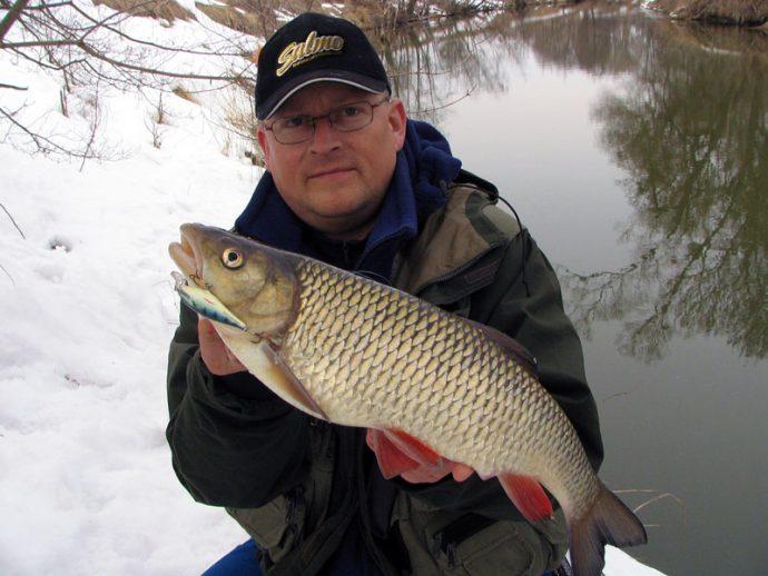 Ловля голавля зимой на течении