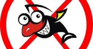 Запреты на бесплатную рыбалку