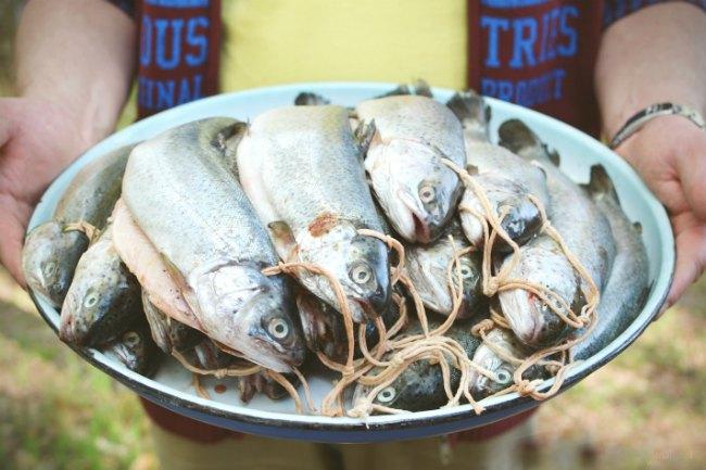 Подготовка рыбы к этапу копчения