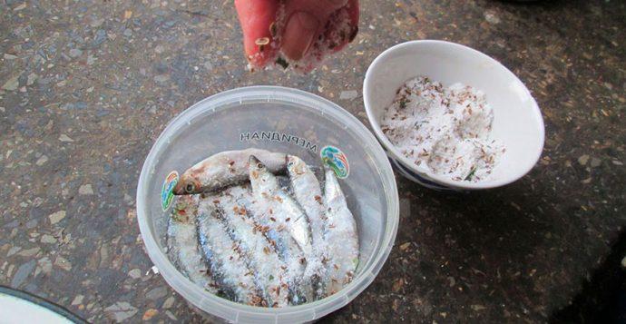 Как быстро засолить мороженую рыбу