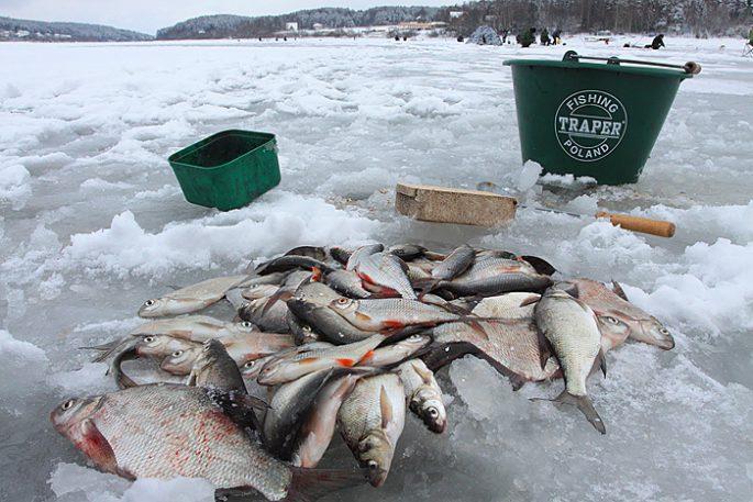 Прикормки для зимней рыбалки