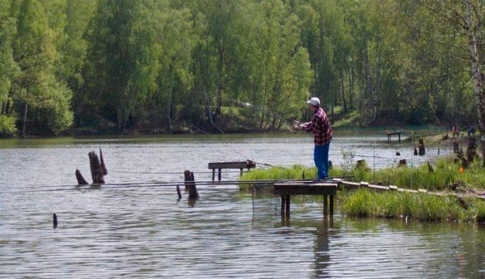 Платная рыбалка без ограничения вылова в Подмосковье