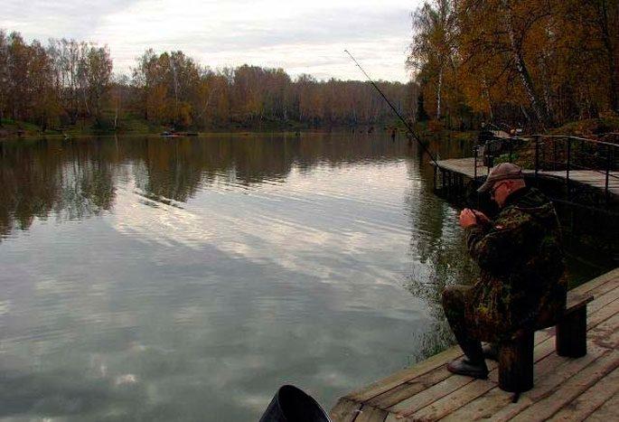 Платная рыбалка Дикий карп