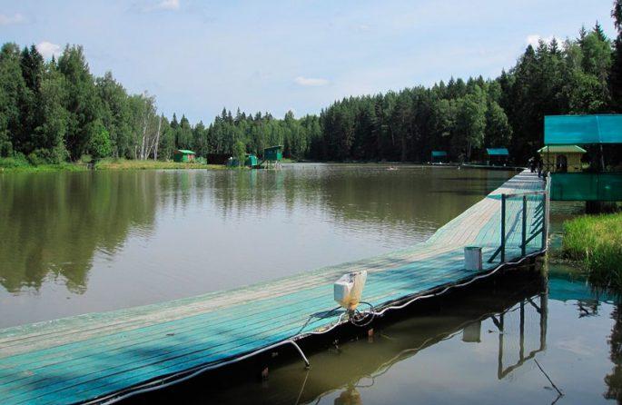 Деревня Хомяково