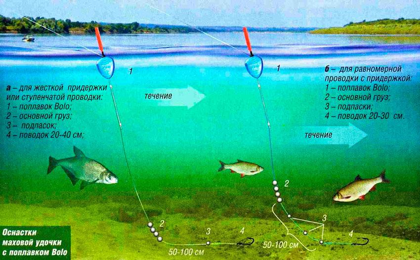 Ловля поплавочной удочкой на течении