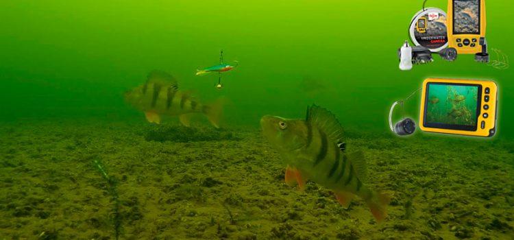 Камера для подледной рыбалки