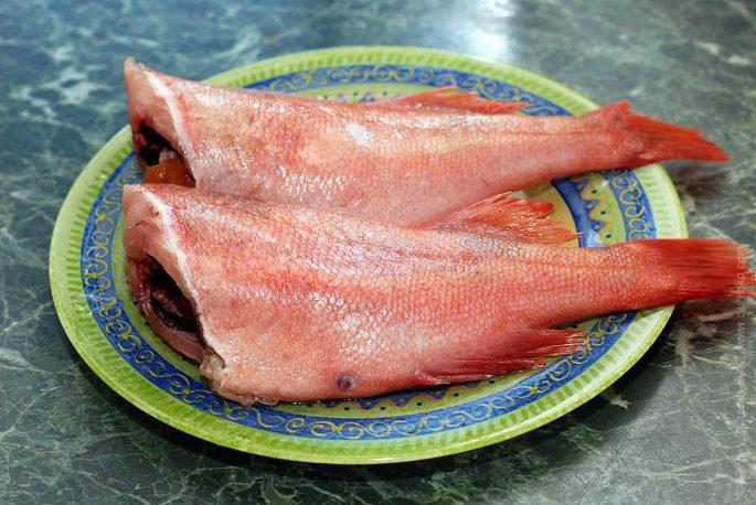 Самые вкусные рецепты из морского окуня
